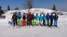 skitag2015_1
